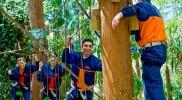 Treetop Challenge 04